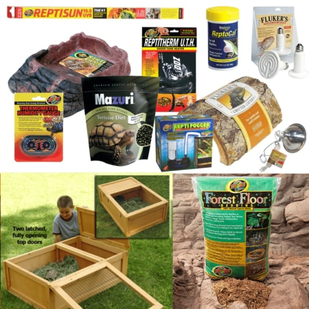 best tortoise kit for sale zomed tortoise house for sale
