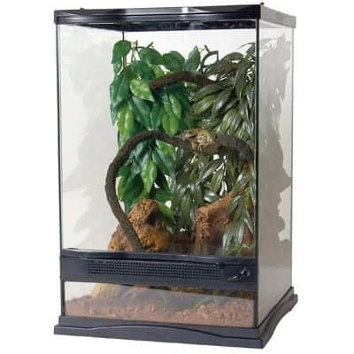 Zoomed Naturalistic Terrarium Small