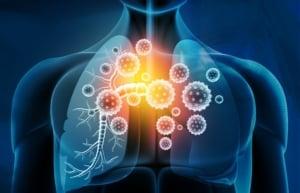 immune system gummies
